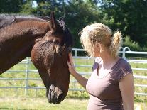 Persönlichkeitsentwicklung mit dem Pferd