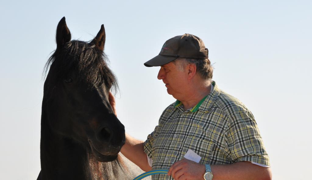 Mann steht mit Pferd auf dem reitplatz