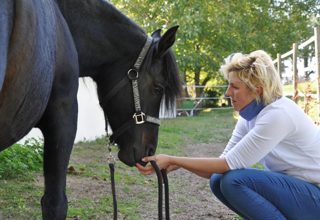 Beziehungstraining mit dem Pferd Frau kniet vertauensvoll