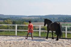 Teilnehmerin läuft mit dem Pferd auf dem Reitplatz