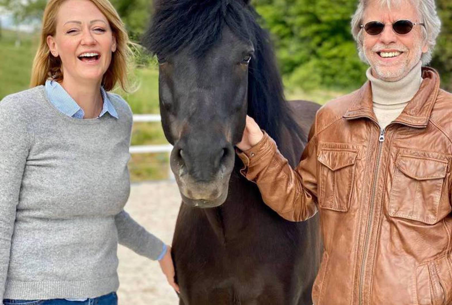 Insegnameto equino