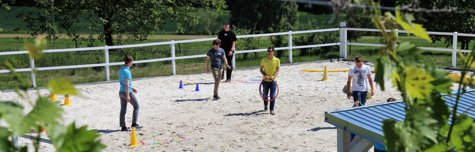 Team Building with horses
