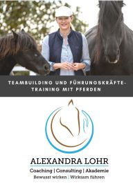Teambuilding mit Pferden