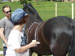 Jutta im Erlebnis mit Pferd