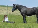 Achtsamkeitstraining mit Pferd