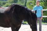 Vertrauen und Gelassenheit im Pferdetraining