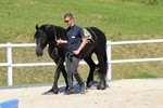 Führungskräfteentwicklung mit Pferd