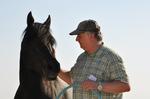 Führungstraining mit Pferd