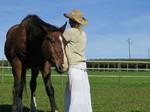 Zusammensein mit dem Pferd