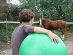 Ball spielen mit dem pferd