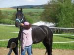 Mit dem Pferd Zeit verbringen