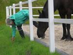 Frau pflückt Gras für das Pferd