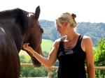 Workshop mit dem Pferd