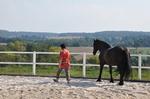 Frau läuft mit Pferd