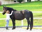 Mädchen umarmt Pferd