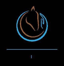 Logo Pferdegestütztes Training Alexandra Lohr